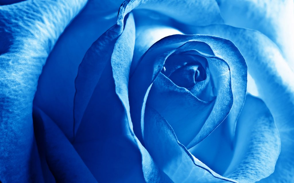 ArcSens blue