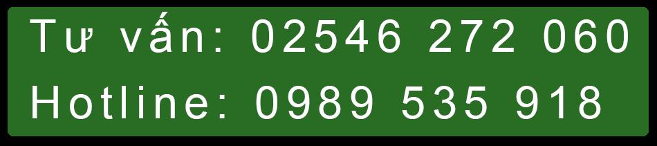 Tư vấn 02546 272 060